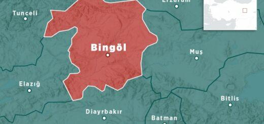 Bingyol